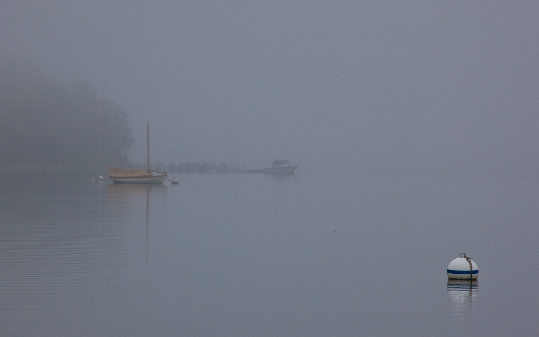 Foggy morning Little Ram Shelter Island, NY